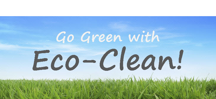 Eco Clean Best Carpet Cleaning Bellevue Wa